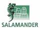 Акции и скидки на пластиковые окна от компании Salamander